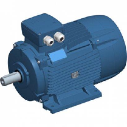 DELPHI three-phase motors 160-355