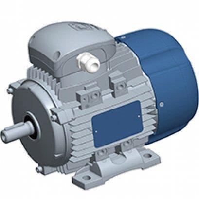 DELPHI three-phase motors 56-132