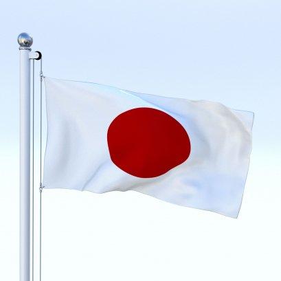 Private Japanese - 10 pertemuan