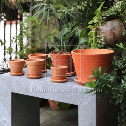 Terracotta Pot & Tray