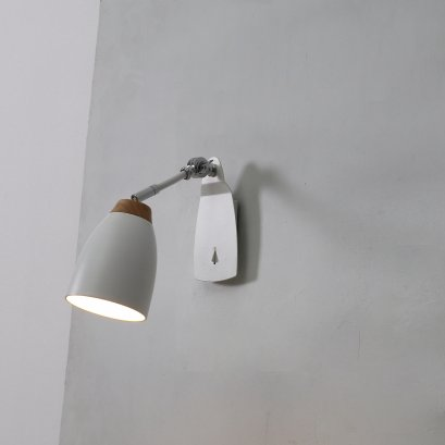 โคมไฟกิ่งใน watchman APl-W