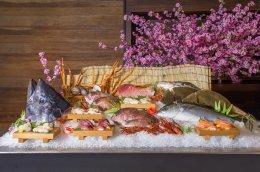 """""""บลู ฟิน ทูน่า"""" หลากหลายเมนูต้นตำรับ ในเทศกาลอาหารญี่ปุ่น"""