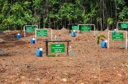 ลามิน่า จัดกิจกรรมเพื่อสังคม ปลูกฟื้นฟูป่า 50 ไร่ ใน จ.นครราชสีมา