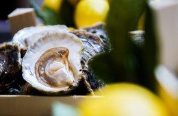 หอยนางรมสดจากทุกมุมโลก ณ ห้องอาหารเมดิสัน
