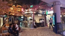 Welcome to our Pattaya Branch