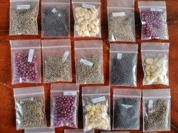 """คณะเกษตรศาสตร์และทรัพยากรธรรมชาติ ม.พะเยา ร่วมสนับสนุนมอบเมล็ดพันธุ์พืชผักสวนครัว ในโครงการ """"ปลูกผักสวนครัวเพื่อสร้างความมั่นคงทางอาหารในภาวะวิกฤต การแพร่ระบาดของเชื้อไวรัสโคโรนา 2019"""""""