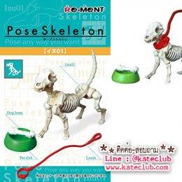 (พร้อมส่งค่ะ) Re-ment Pose Skeleton Dog โครงกระดูกสุนัข