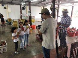 ข่าวช่องวัน 31 มาสัมภาษณ์ทางสวนเกี่ยวกับการปลูกการจัดการแล้วก็การตลาดของแก้วมังกรสายพันธุ์ต่างๆ