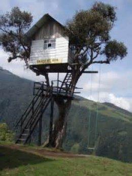 บ้านต้นไม้ดีไซน์สวยแปลกตา ที่เห็นแล้วต้องตะลึง