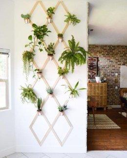 ไอเดียการปลูกต้นไม้บนกำแพง