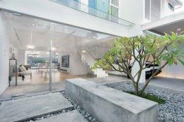 บ้านในฮ่องกง ที่ถูกออกแบบมาสำหรับคนรักรถ