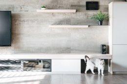 บ้านที่ถูกออกแบบมาเพื่อคนรักแมว