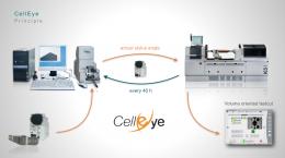 Get to know SprintEasy & CellEye