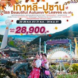 ทัวร์เกาหลี : ปูซาน โซล Beautiful Autumn Leaves 5D3N (TG)
