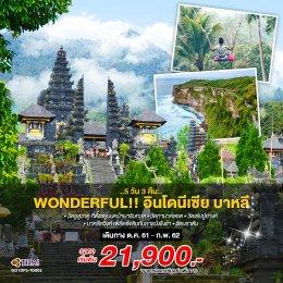 ทัวร์อินโดนีเซีย :  Wonderful !! อินโดนีเซีย บาหลี