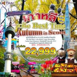 ทัวร์เกาหลี : The Best Time Autumn in Seoul
