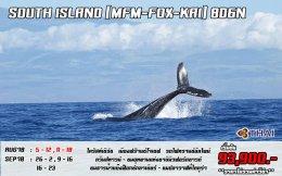 South 8D6N MFM+FOX+KAI   AUG - NOV BY TG
