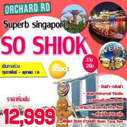 ทัวร์สิงคโปร์ : SUPERB SO SHIOK