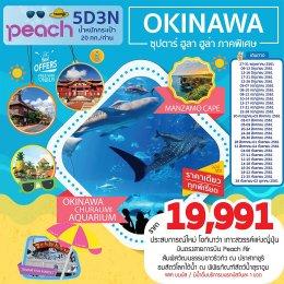 ทัวร์ญี่ปุ่น : OKINAWA ซุปตาร์ ฮูลา ฮูล่า ภาคพิเศษ