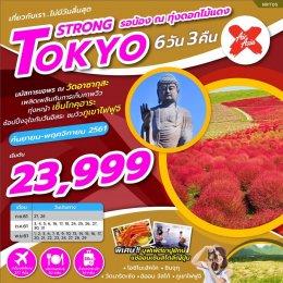 ทัวร์ญี่ปุ่น : Tokyo Strong รอน้อง ณ.ทุ่งดอกไม้แดง 6D3N