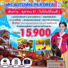 ทัวร์เกาหลี : HAPPY TOGETHER MY AUTUMN IN KOREA 5D3N