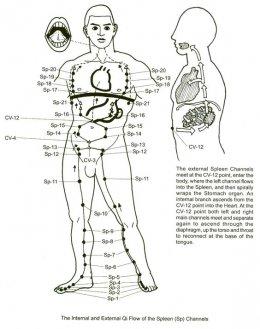 ชายวัยกลางคนกับโรคต่อมลูกหมาก ดูแลรักษาด้วยศาสตร์แพทย์จีน