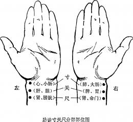 หาหมอจีนทำไมต้องแมะ ? Pulse Diagnosis