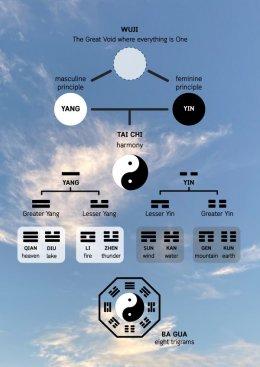 ทฤษฎีอิน-หยาง Yin & Yang พื้นฐานการแพทย์แผนจีน