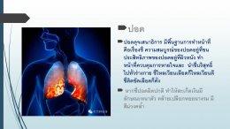 รักษาโรคสะเก็ดเงินด้วยวิธีแพทย์แผนจีน