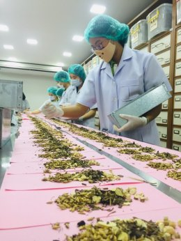 บทบาทของแพทย์แผนจีนกับการรักษาโรคไวรัสโควิด-19 ในประเทศไทย