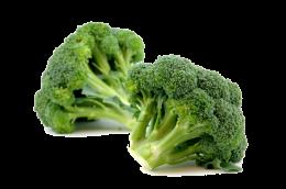 บร็อคโคลี่ ( Broccoli )