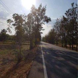 EHL - 213236 ขายที่ดินสวยติดถนนหลักแปลงใหญ่ ใกล้โรงเรียนมัธยมศึกษาของ อ.พลับพลาชัย จ.บุรีรัมย์