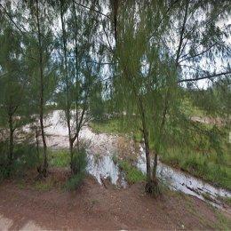 ที่ดินติดทะเล32-3-14ไร่ หาดส่วนตัวกว้าง200ม. Land next to the sea 32-3-14 rai Private beach 200 meters wide ID - 192204
