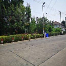 ที่ดินหน้าหมู่บ้านศุภาลัย ขนาด 1 ไร่ ID - 202663