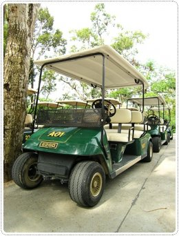 สวนสัตว์เปิดเขาเขียว ชลบุรี