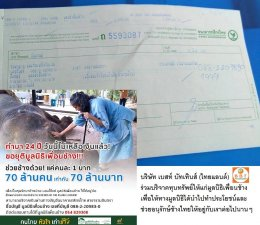 """Donation to """"Friends of the Asian Elephant Foundation"""""""