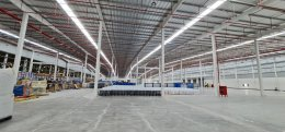 Warehouse/Factory in Rayong