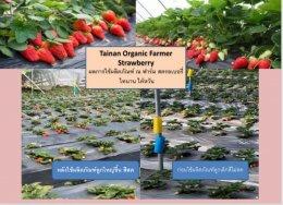 ผู้สำเร็จมากกว่า500ราย  ด้านเทคโนโลยีใหม่ทางการเกษตร