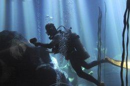 สตูดิโอ S2 Water Tank สระถ่ายทำใต้น้ำ