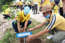 กิจกรรมปลูกต้นไม้และปลูกป่าเฉลิมพระเกียรติ เนื่องในโอกาสมหามงคลพระราชพิธีบรมราชาภิเษก