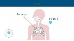 บทความ: ฝุ่น PM2.5 กับปัญหาเรื่องความงาม
