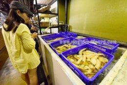 เที่ยวไต้หวันอิสระด้วยตัวเอง ไต้หวันออนทัวร์ ตอน 28 @ ไปกินอาหารทะเลสด ที่ตลาดปลาไทเป