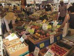Farmers Market @ UNU