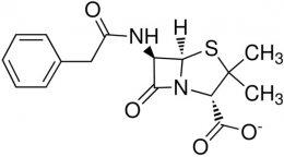 Penicillin G Potassium Salt, USP Grade