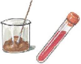 โรคซาลโมเนโลซิส salmonellosis
