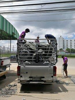ส่งสินค้าพร้อม ส่งภึงที่ กะทะล้อรถบรรทุก ชุบโครเมียม   นนทบุรี ใช้ดี ทนสุดๆๆ