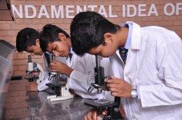 IPS INTERNATIONAL SCHOOL