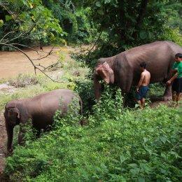 3 Days 2 Nights Experience Trek National Park, Huay Nam Dung