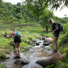 3 Days 2 Nights Experience Trek National Park, Huay Nam Dung