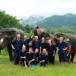 Full Day visit and Support at Eco Elephant Care